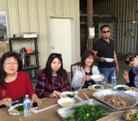 土雞 土羊加有機豆苗 這頓午餐真豐富